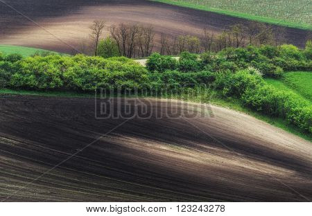 Czech Republic. South Moravia. Moravian field, plowed land
