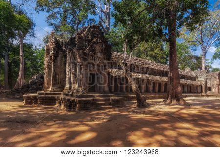 SIEM REAP, CAMBODIA. December 16, 2011. Ancient Khmer architecture. Ta Prohm temple with giant banyan tree at Angkor Wat complex.