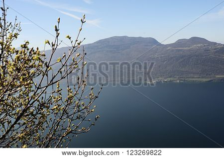 Bourget Lake And Mountains