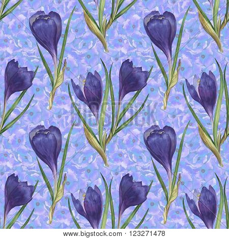 Watercolor colorful spring and summer flowers seamless pattern set with crocuses and primula