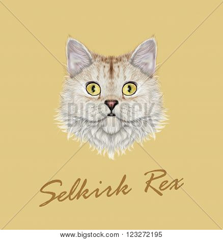 Cute face of cute domestic cat on yellow background.