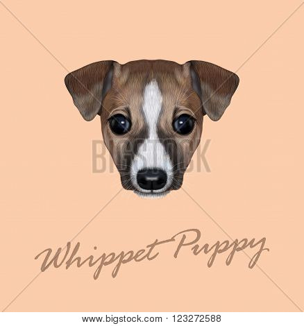 Cute face of domestic dog on pink background.