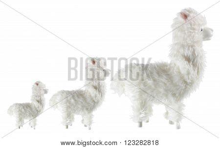 Row of Soft toy Llamas on White Background