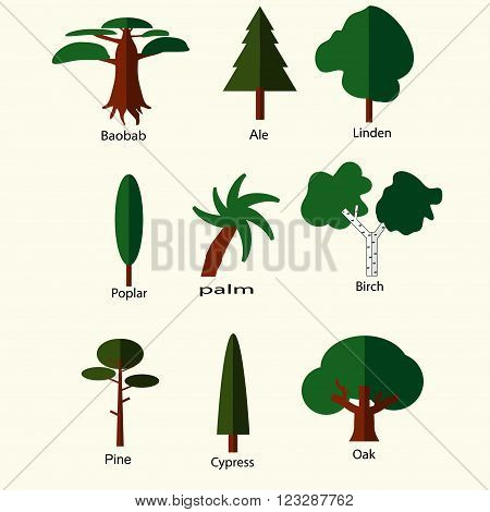flat green trees icons set birch pine ale oak cypress baobab poplar palm linden  isolated on white. vector