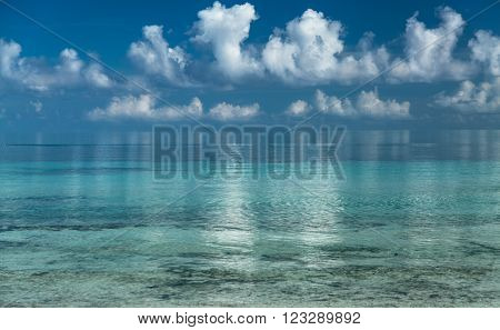 Amazing gorgeous stunning view of early morning looks like ice ocean and white fluffy clouds reflected in water at Cuban Cayo Coco island beach