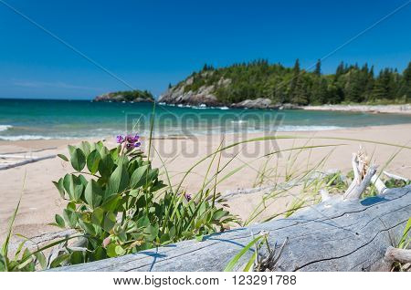 Northern shore of Great Lake Superior. Pukaskwa National Park of Canada. Ontario Canada