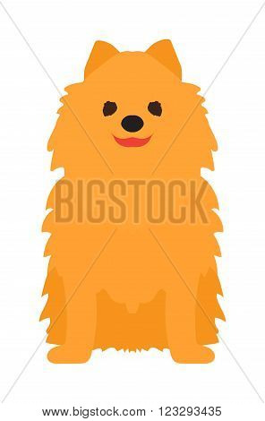 Lap-dog puppy sitting and portrait gold lap-dog vector. An adorable young lap-dog Yorkshire Terrier vector isolated on white.