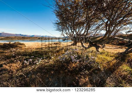 Autumn in Patagonia. Tierra del Fuego Beagle Channel and Chilean territory view from the Argentina side