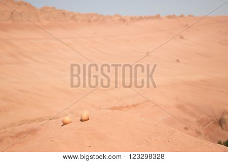 Two eggs on a sand hill in the desert to be cooked by the ground temperature