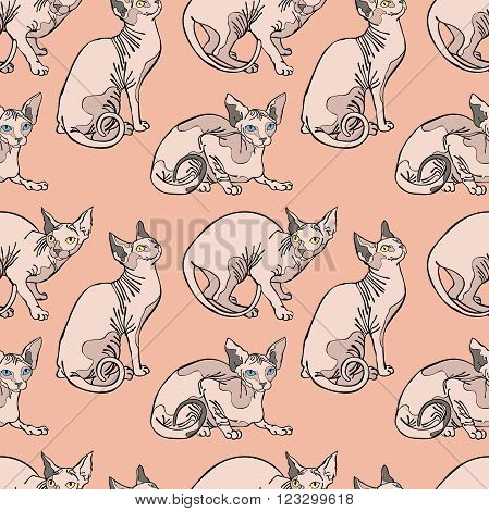Hairless naked cats. Sphynx Cats. Seamless vector pattern (background).