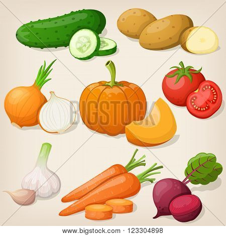 Set of different vegetable. Vector illustrations EPS10