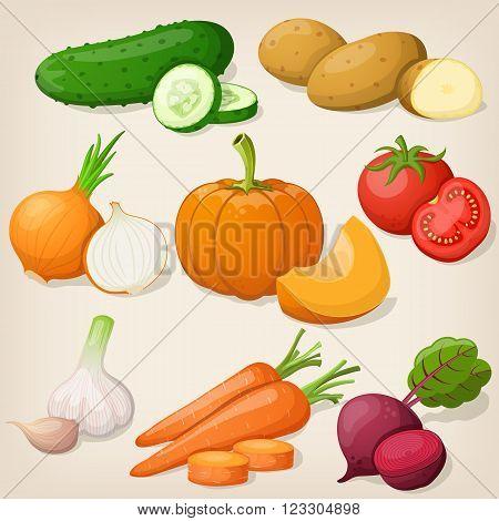 Set of different vegetable. Vector illustrations EPS10