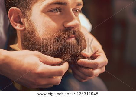 Handsome bearded man sitting in the barbershop while professional barber styling his beard.