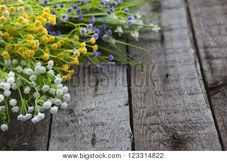 Wildflowers on the background of wood. Multicolored