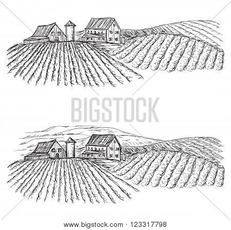 Landscape with Fields and Villages. Hand drawn Vineyard
