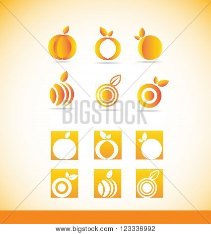 Vector company logo icon element template fruit abstract orange set