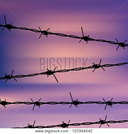 Barbed Wire Against Sky