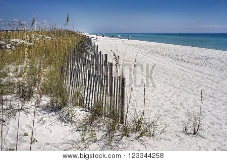 Sand fences protect dunes from erosion on white sand beach in Florida on the Gulf of Mexico.