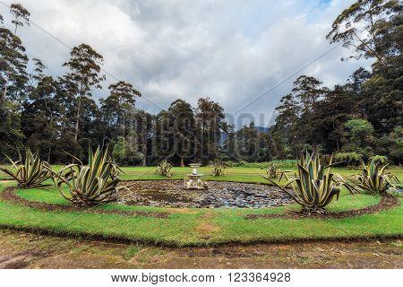 Nuwara Eliya, Sri Lanka. Queen Victoria Park