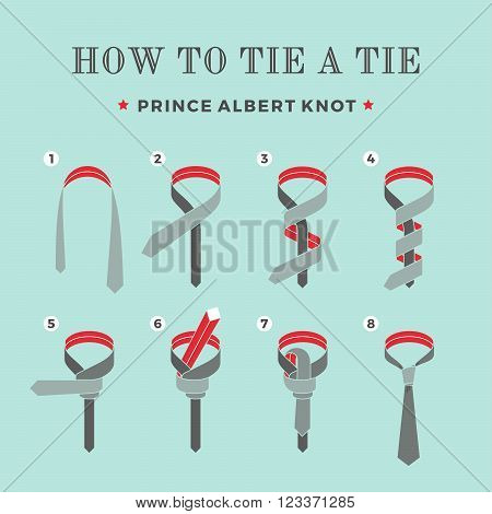 Instructions on how to tie a tie on the turquoise background of the eight steps. Prince Albert knot . Vector Illustration