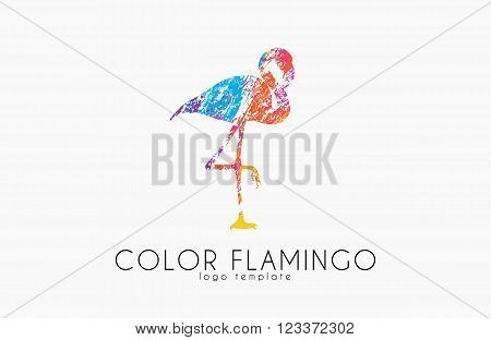 Flamingo logo. Color flamingo. Beautiful bird logo. Creative logo.