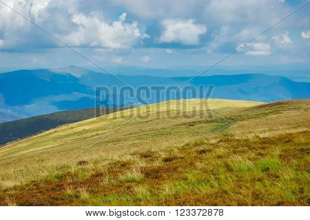 view meadow in mountains Carpathians, sun filter