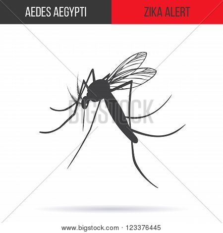 Zika alert banner poster flyer with aegypti aedes mosquito silhouette. High quality graphic design elements isolated on white background with shadow. Healthcare concept