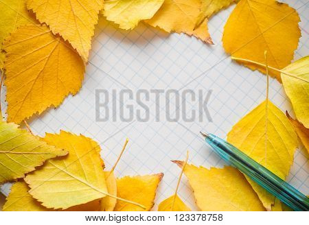 Colorful autumn leaves and pen on diary Autumn composition. Free space for text.