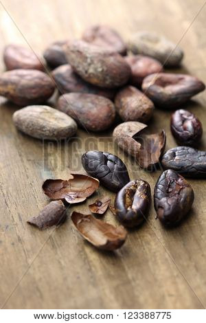 raw and roasted cacao cocoa beans