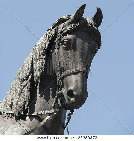 The horse of the Garibaldi's monument in Rome