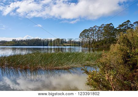 Clouds being relfected on the calm waters of Lake Manuwai in Northland New Zealand against a backdrop of trees