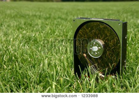 Hard Disk Drive In Green Grass