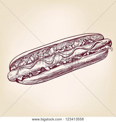 hot dog fast food, hand drawn vector illustration realistic sketch