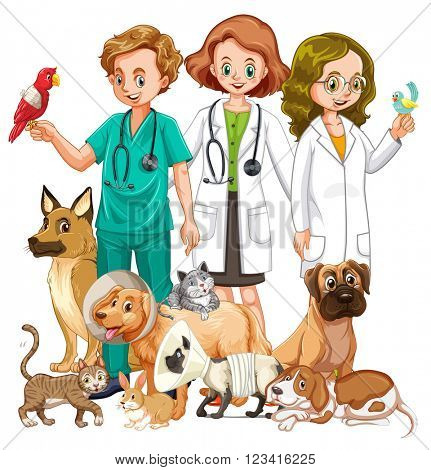 Vets and many type of animals illustration