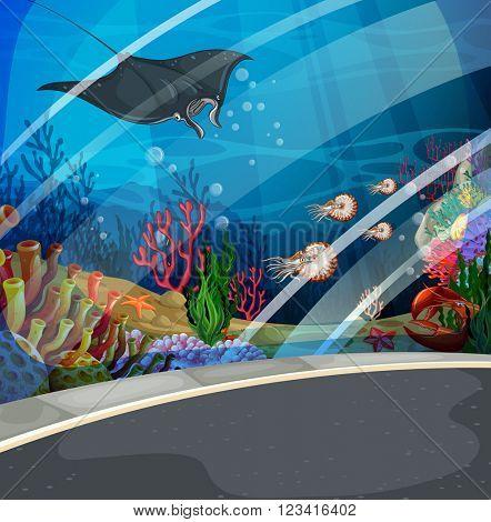 Aquarium with stingray swimming  illustration