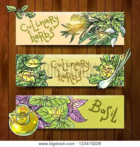Set of beautiful hand drawn vector  banners with culinary herbs