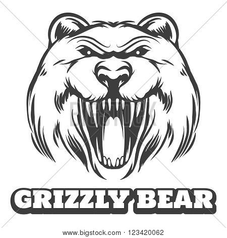 Bear head logo. Grizzly bear icon with logo. Vector illustration