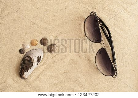 Sea Shells Footprint And Sunglasses