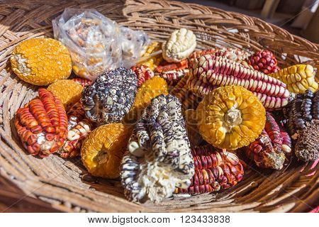 Different maize and corn types in the basket ** Note: Shallow depth of field