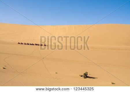 Sand dune in Gobi Desert, Dunhuang, China