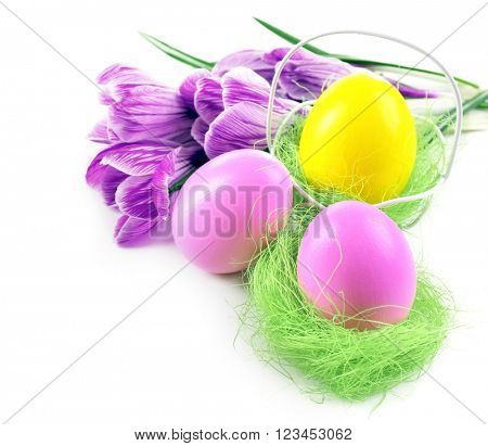 Multicoloured Easter eggs and crocus isolated on white