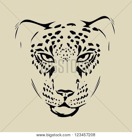 Vector cheetah pencil portrait on the white background