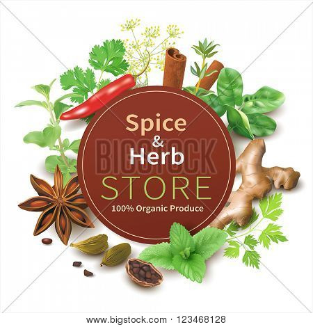 Spice and herb store background. Vector illustration.
