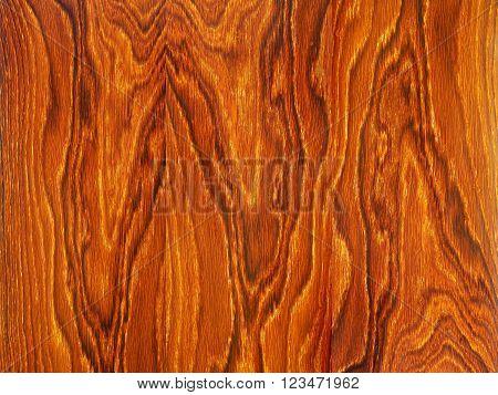 Oak Veneer Wood Texture Pattern Of Wood Fibers
