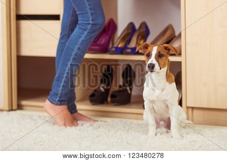 Girl In A Dressing Room