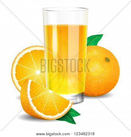 Fresh orange juice and pieces of orange citrus juice and oranges. Realistic transparent glass of juice vector illustration on white background
