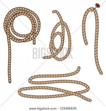 Abstract rope elements. Vector illustration. Rope set.