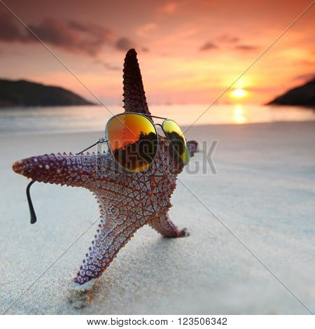 Starfish in sunglasses on the beach and beautiful sunset over the sea background