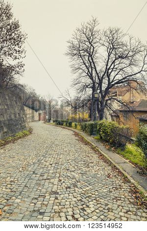 Street Near Buda Castle, Budapest At Winter, Hungary