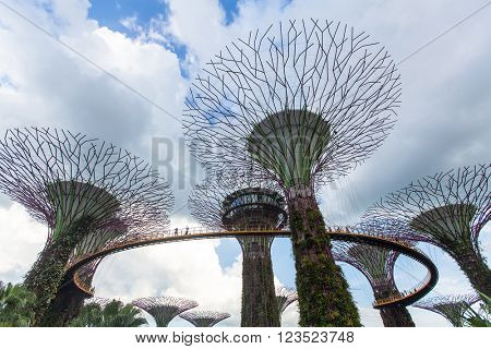 SINGAPORE - FEB 19, 2016: View of Gardens by the Bay. Gardens by the Bay is a nature park spanning 101 hectares (250 acres) of reclaimed land in central Singapore, adjacent to the Marina Reservoir.